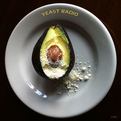 Yeast Radio 1141 GRIZELDA YEAST