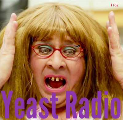 yeast radio epsode 1162 album art